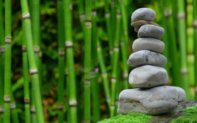 Śliczny ,a także ładny ogród to zasługa wielu godzin spędzonych  w jego zaciszu w trakcie pielegnacji.